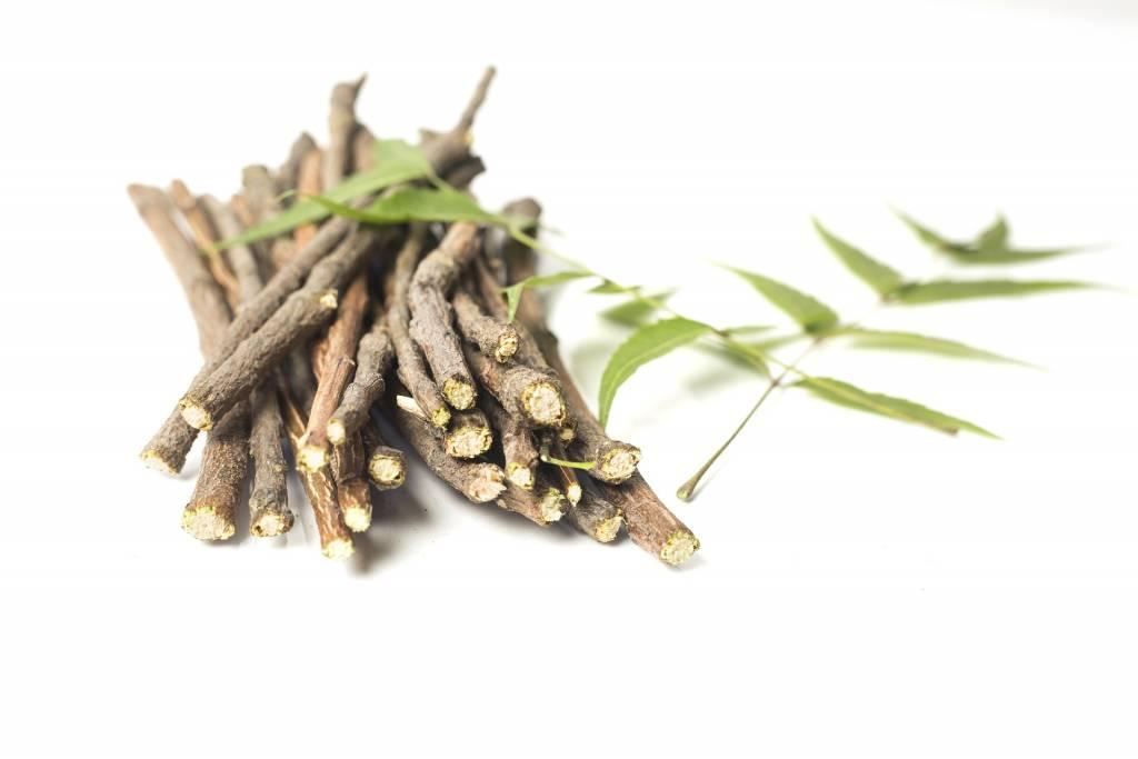 Regaliz (Glycyrrhiza glabra), potente emético para panchakarma