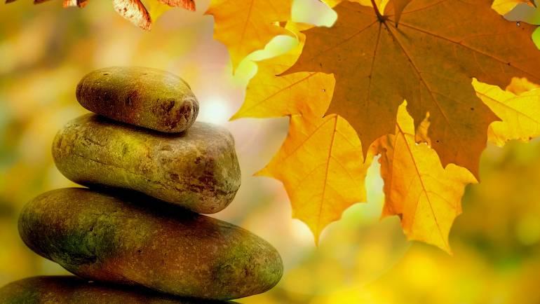 El concepto de «dosha» en Āyurveda: definición, historia y actualidad