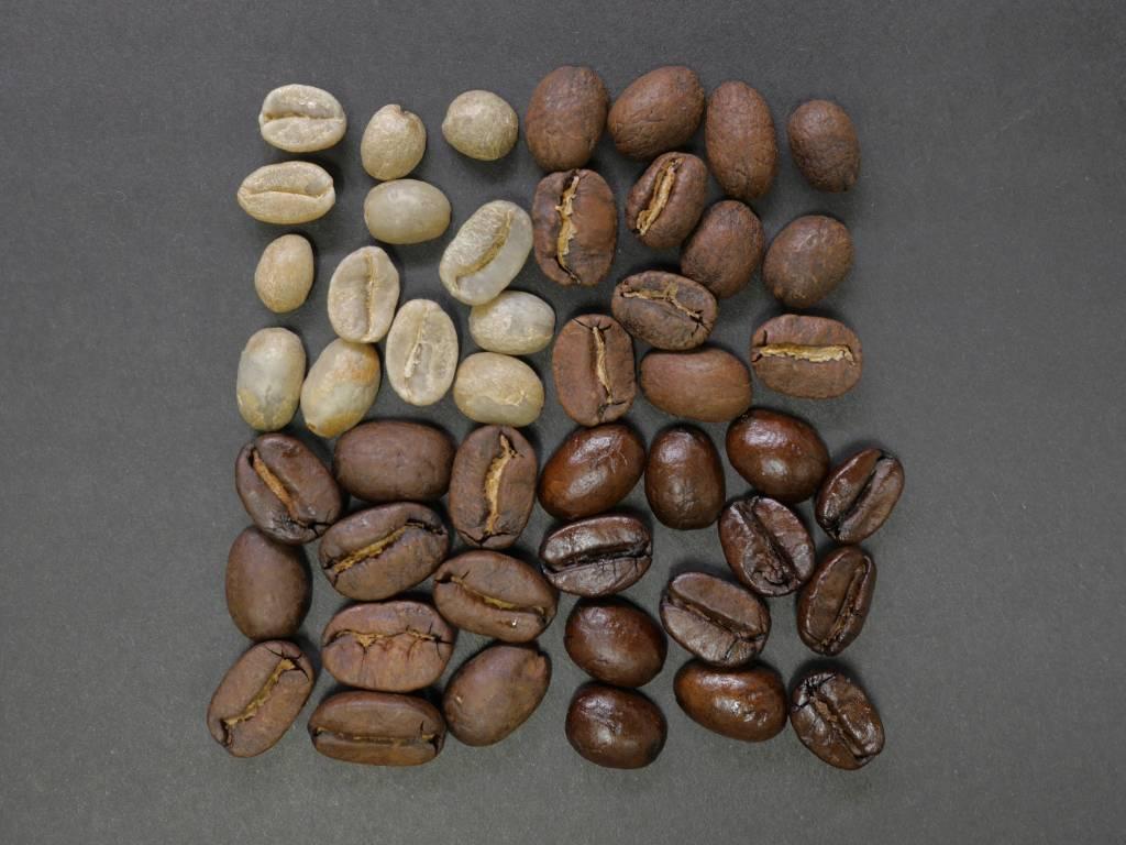 El café en Āyurveda el café verde como alternativa