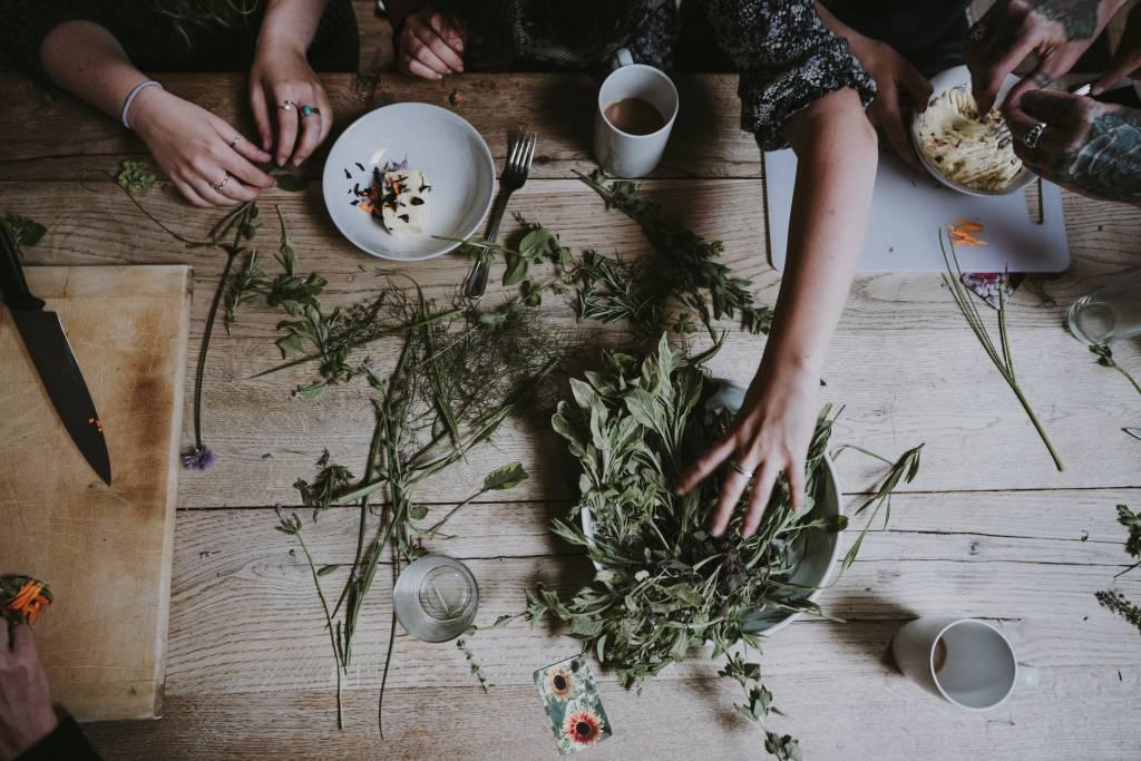 plantas ayurvédicas