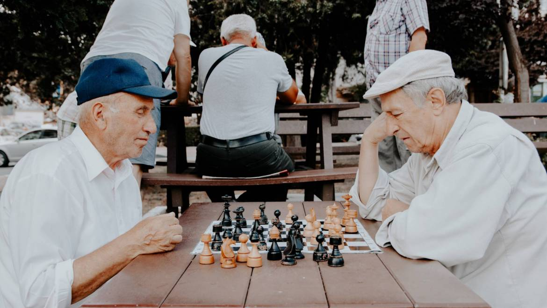 Alzheimer y demencias en Āyurveda II: tratamiento